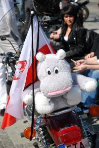 motocyklowy-zlot-gwiazdzisty5